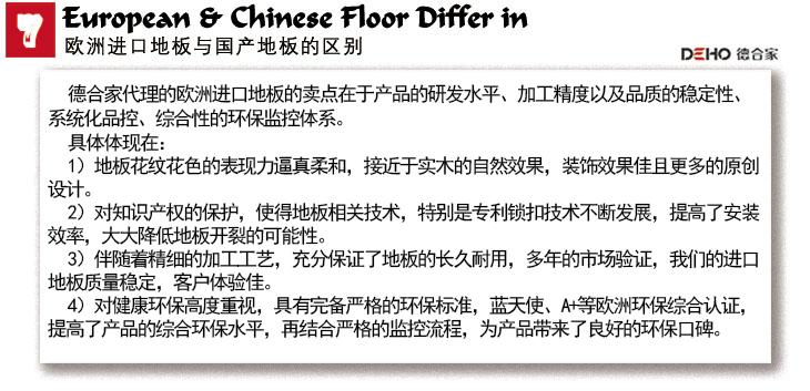 7-European-&-Chinese-Floor-Differ-in8529.jpg